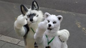 Eurofurence 21 - Funny :D by ShaneTheWolf