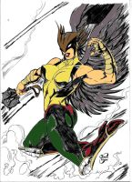 Hawkgirl by Dairugger
