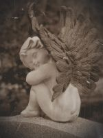 Don't Blink by PixiePoxPhotography