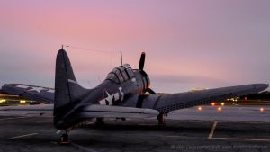 Dauntless at Dawn by aviationbuff