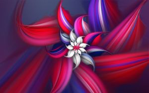 July Fourth Flower by Frankief