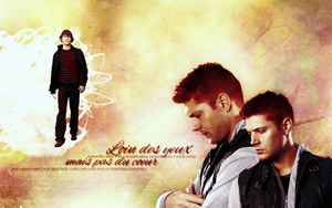 Wallpaper_ Sam and Dean by numb22z
