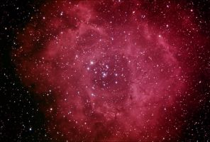The Rosette Nebula by mscoelho
