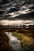 Silent Waters by Ardak