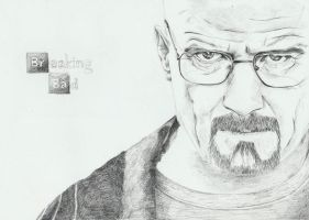 Breaking Bad by purecoincidence