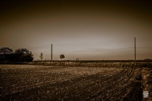 Field after the work by sylvaincollet