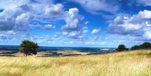 View across Bedfordshire by DrHamster