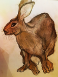 Hare 8 by whydoyoucaresomuch