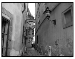 Vienna's Streets by TiZa