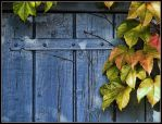 Autumn Door by kanes