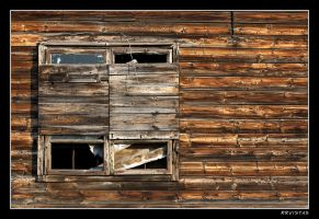 wooden shack wall by RRVISTAS