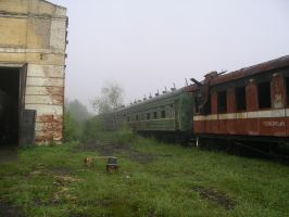 Abandoned Rolling Stock by Teplovoznik