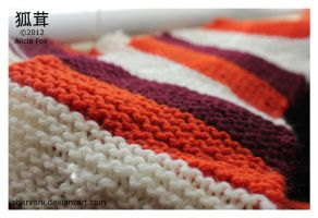 Autumn colours scarf by sharvani