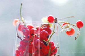 currant1... by TheRedGirl