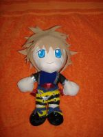Kingdom Hearts Sora trade by Momosangel