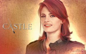 Castle - Kate Beckett by Amro0