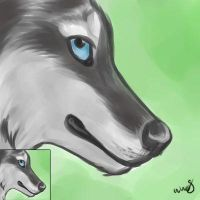 Icon for WolvenSorceress by IsolatedHowl