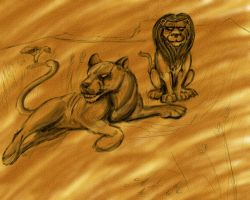 Lions by theCheeseGrater