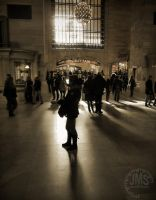 Grand Central in Sun 2012 by steeber