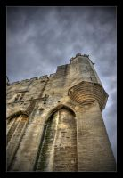Palais Des Papes 2 HDR by GregColl