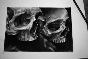skull drawing by emanuelmrs