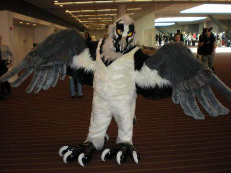 AC 2010 Fursuiter 3 by Skyfirefox