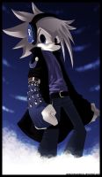 Valkus the Hedgehog by veriitus