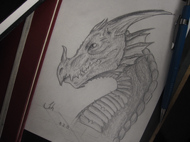 Dragon sketch by Krains
