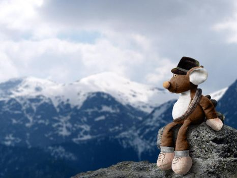 Teddy the Alpinist by mxade