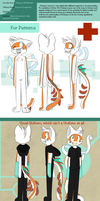 Pokeyoo Full Ref 2013 Updated by SmilehKitteh