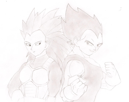 Articha and Vegeta (Request) by Azoresangel