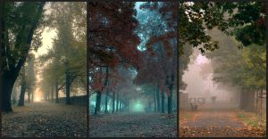 The colours of Autumn by sparke7200
