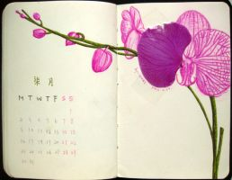 7th page of 2012 calendar by wwei