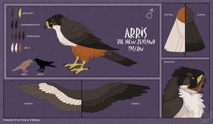 CS - Arris by Chaluny