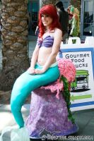 Little Mermaid Cosplay by TracieCotta