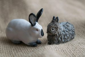 Californian and Jersey Woolly Rabbit Sculptures by phacelia