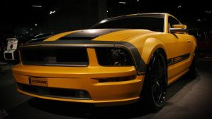 Ford Mustang 1 by ShagStyle