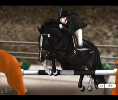 Problem in the Ring by Jullelin
