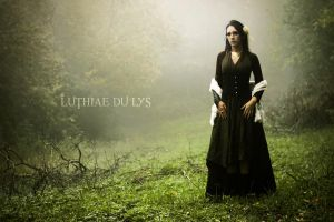 Songe d'un disparu I by Luthiae