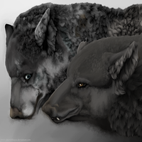 The wolf and non-wolf by shewolfkajsa