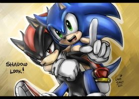 SONIC AND SHADOW by LeonS-7