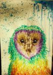 Rainbow Owl ^.^ by AshiharaLover