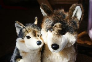 Douglas Atka Wolf and Smoke Wolf by Huskyplush