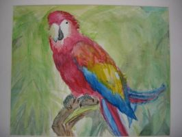 Parrot by FlipboyGeoX