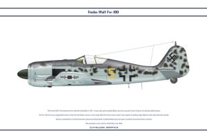 Fw190A6 JG54 1 by WS-Clave