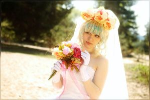 TTGL - Sunshine Bride by m-snark