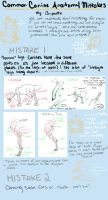 Common Canine Anatomy Mistakes by Ooupoutto