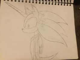 Prince(ss) Sonic Prince(ss) of the sun by rayquaza2828