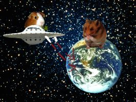 when hamsters rule the earth by insanespamking