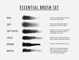Essential Brush Set by Shilesque